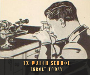 Timezone Watch School